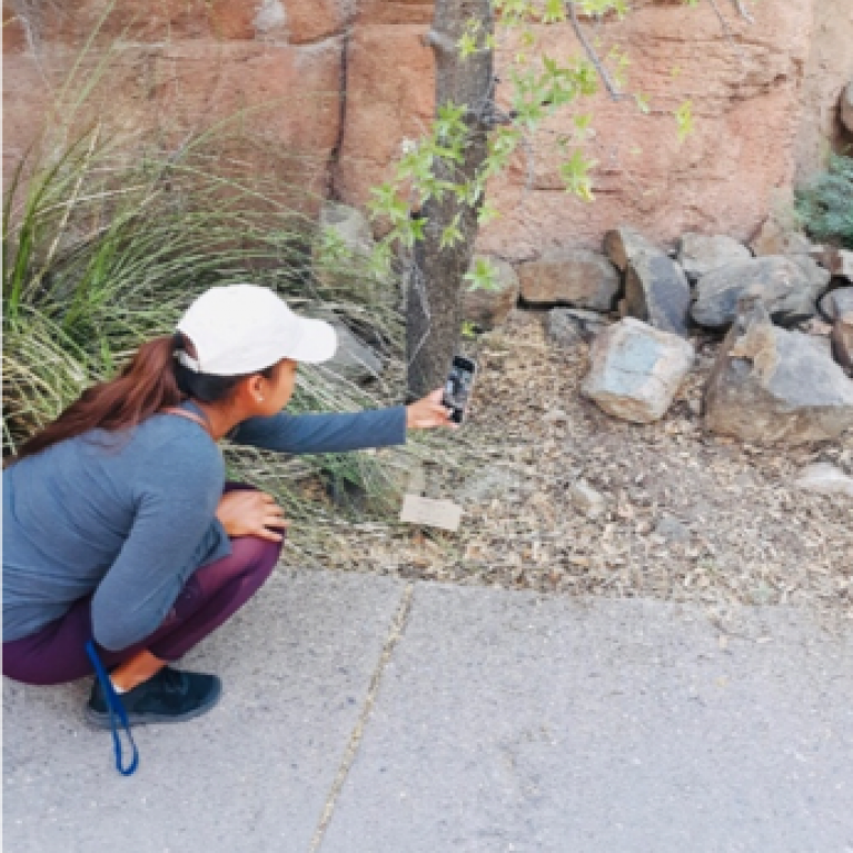 Deandra Jones takes picture of squirrel with smartphone